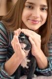 El adolescente sonriente está jugando con el perrito del terrier de Staffordshire Fotografía de archivo