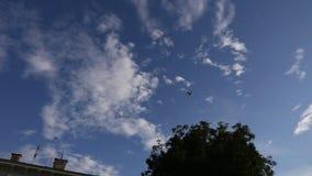 El aeroplano vuela por encima en el cielo azul almacen de metraje de vídeo