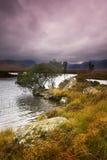 El afloramiento en rancho amarra Fotografía de archivo
