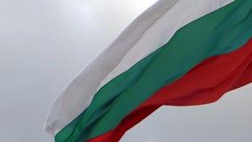 El agitar búlgaro de la bandera metrajes