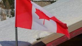 El agitar canadiense de la bandera almacen de metraje de vídeo