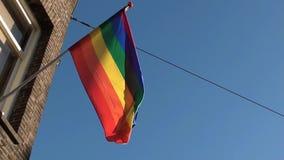 El agitar de la bandera del arco iris almacen de metraje de vídeo