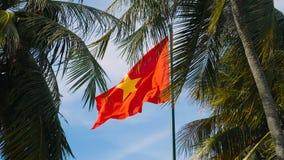 El agitar de la bandera de Vietnam almacen de metraje de vídeo