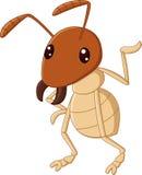 El agitar de la historieta de la termita aislado en el fondo blanco Fotos de archivo