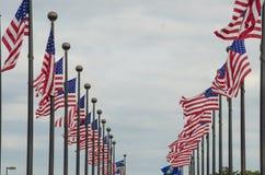 El agitar de las banderas americanas Fotos de archivo libres de regalías