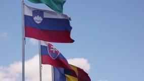 El agitar de las banderas de países de la unión europea metrajes