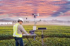 El agrónomo que usa la tableta recoge datos con el instrumento meteorológico para medir la velocidad, la temperatura y la humedad fotos de archivo