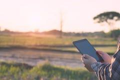 El agrónomo Using una tableta para leyó un informe en el campo de la agricultura foto de archivo
