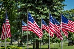 El agrupar de las banderas americanas que agitan en parque en Memorial Day Imagen de archivo