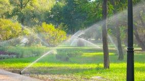 El agua asperja el sistema en el césped del parque almacen de video