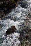 El agua blanca se estrella abajo del valle Fotos de archivo libres de regalías