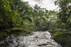 El agua cae en la isla tropical de Sao Tome fotografía de archivo libre de regalías