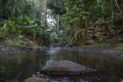 El agua cae en la isla tropical de Sao Tome imágenes de archivo libres de regalías