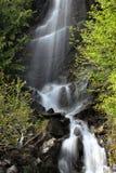 El agua cae en el parque del Monte Rainier Foto de archivo libre de regalías