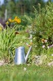 El agua de acero puede contra las flores en jardín imagen de archivo