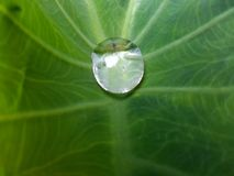 El agua de la naturaleza fotografía de archivo