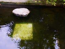 El agua en una piscina en mi hogar imagenes de archivo