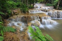 El agua es conducido de la naturaleza Fotografía de archivo