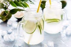 El agua infundida fría y de restauración del Detox con la cal en un vidrio sacude la limonada sabrosa de la cal horizontal Fotos de archivo libres de regalías