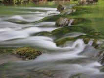 El agua lenta con el musgo cubrió la piedra Fotografía de archivo libre de regalías
