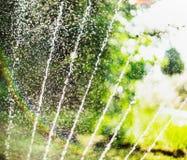 El agua vierte salpica y bokeh del riego en jardín del verano con la regadera en fondo borroso del follaje del árbol Imagen de archivo