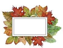 El aguazo de la acuarela que dibujaba ramas coloridas de las hojas fijó de autum ilustración del vector