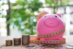 El ahorro acuña para el negocio y las finanzas del concepto de la inversión Imagen de archivo libre de regalías