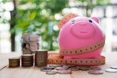 El ahorro acuña para el negocio y las finanzas del concepto de la inversión Fotografía de archivo libre de regalías