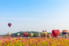 El aire caliente colorido hincha el vuelo en Singh Park en Chiang Rai imagenes de archivo