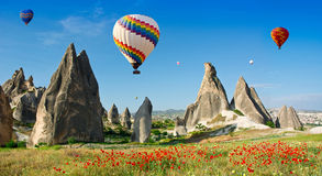 El aire caliente hincha volar sobre un campo de amapolas, Cappadocia, Turquía Foto de archivo libre de regalías