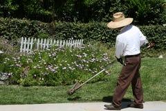 El ajardinar de la hierba del ribete del hombre Fotos de archivo libres de regalías