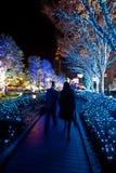 El ajardinar de la iluminación de la Navidad Imagen de archivo