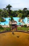 El ajardinar tropical del centro turístico Fotos de archivo libres de regalías
