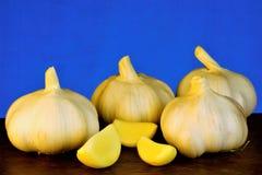 El ajo es una verdura popular, un gusto agudo y un olor característico El ajo se valora para su gusto, aroma y curación únicos imágenes de archivo libres de regalías