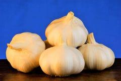 El ajo es una verdura popular, un gusto agudo y un olor característico El ajo se valora para su gusto, aroma y curación únicos fotos de archivo libres de regalías