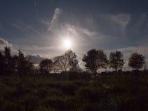 El ajuste del sol que entra abajo en el cielo sobre los tops del árbol y los wi de la tierra Foto de archivo libre de regalías