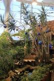 El ajuste tropical con las decoraciones que celebran Chirstmas, bailando se va volando la casa de la mariposa el museo fuerte, Ro fotografía de archivo