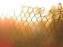 El alambre desigual de la parrilla en fuego Fotos de archivo libres de regalías