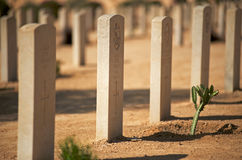 El Alamein Royalty Free Stock Photos