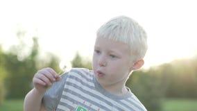 El albino del muchacho está soplando un diente de león Cámara lenta almacen de metraje de vídeo