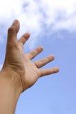 El alcanzar para el cielo Fotografía de archivo libre de regalías