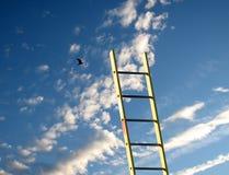 El alcanzar para el cielo Foto de archivo libre de regalías