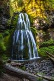 El alcohol baja cascada de conexión en cascada en Oregon del noroeste pacífico fotos de archivo libres de regalías