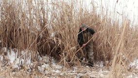 El aldeano masculino en un lago congelado cubierto con nieve cortó las cañas secas, para calentar la casa y la quemadura en el ho almacen de video