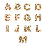 El alfabeto floral [A - M] fijó Fotografía de archivo libre de regalías