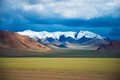 El Ali tibetano en el sueño Fotografía de archivo libre de regalías