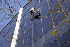 El alto trabajador de la limpieza de ventana de la subida limpia un edificio de oficinas imagen de archivo libre de regalías