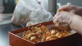 El ama de casa clasifica cebollas en el primer de las manos de la cocina almacen de video