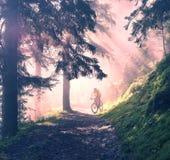 El amanecer irradia el ciclo de la montaña imagen de archivo libre de regalías