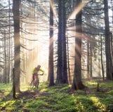 El amanecer irradia el ciclo de la montaña foto de archivo libre de regalías